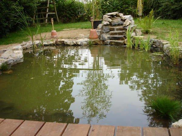 Bassin jardin securite