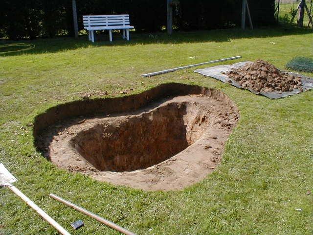 The lion 39 s family la r alisation d 39 un bassin de jardin - Protection bassin de jardin ...